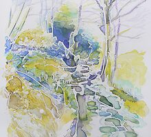 Burrator Trees by Richard Sunderland