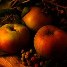 Autumn Apples II by Gazart