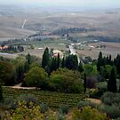 Pienza Landscape by Mui-Ling Teh