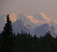 Mt. McKinley at Sunrise by gcampbell