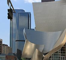Walt Disney Concert Hall by CarolM