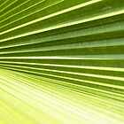 Green by BengLim