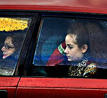 the passenger by Mark Boyle