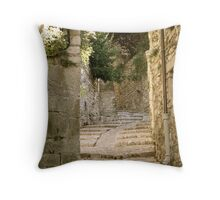 Provence 8 Throw Pillow