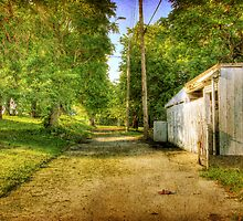 Kansas City Alley 3 by Delany Dean