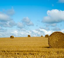 Hay Bales: East Sussex UK by DonDavisUK