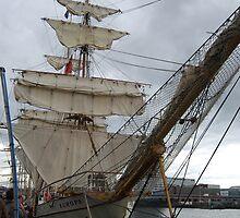 Tall Ship - Europa by Paula  by Ciara(Kevin & Paula) Neupert