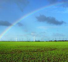 Wattle Point Wind Farm by Paula McManus