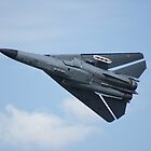 F-111 High Speed Pass by Daniel McIntosh