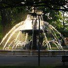 Fountain in the English garden, Geneva by Elena Skvortsova