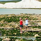 Mermaid at the Seven Sisters Birling Gap Sussex UK by DonDavisUK