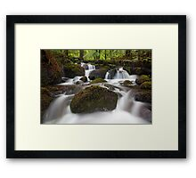 Waters of Life Framed Print