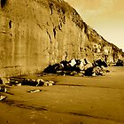 """Encinitas Cliffs in Sepia"" by Tim&Paria Sauls"