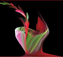 Flower of Lime and Shiraz by dtomw