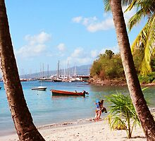 Martinique beach view by Jerry Clitty