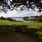 River Fal, Cornwall by Paul Woloschuk