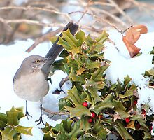 Mockingbird and Holly by Lisa G. Putman