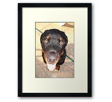 Does My Head Look Big In This? Framed Print