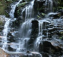 Sylvia Falls - Blue Mountains - Australia by Bryan Freeman