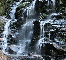 Sylvia Falls - Blue Mountains - Australia by Bryan Freeman