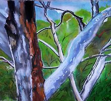 Gum Trees by GloriaDK