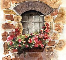 A Window from Civita, Tuscany, Italy by LinFrye