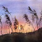 Sundown over the Sea Oats by LinFrye