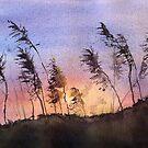Sundown over the Sea Oats by LinFrye