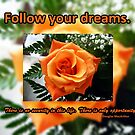 Follow your dreams by Greeting Cards by Tracy DeVore