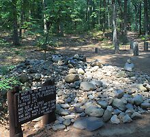 Thoreau Cabin Site by AntonLee
