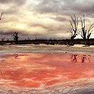 Salt stains. by Steve Chapple