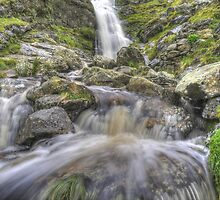 Moss Force in Spate by Simon Hathaway