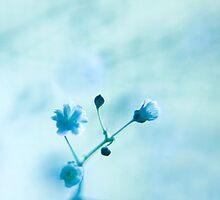 inhale...exhale... by KendraJKantor