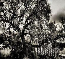 In The Shade Of A Tree   2   ( BoneYard Series ) by Carla Jensen