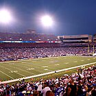 Ralph Wilson Stadium-Buffalo,NY by tigerwings