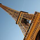 Eiffel Tower by Matthew Pugh