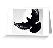 Pigeon silhouette ... Greeting Card