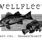 Wellfleet, Cape Cod Fish Poster by Christopher Seufert