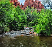 Oak Creek Canyon #2 by Barbara Manis