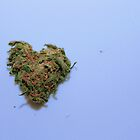 There's Love in this Nug by Wil Widner