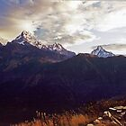 Annapurna South by Harry Oldmeadow
