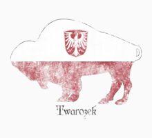 Twarozek Family Shirt - Buffalo Polish Roots T-Shirt