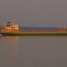 Bedford Basin by kenmo