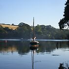 Cornish Shrimper reflection by Alice Oates