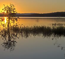 Lake Samsonvale by Liza Yorkston