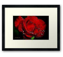 Color Me Red Framed Print