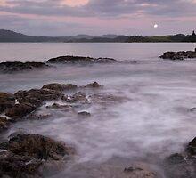 Cable Bay. by Michael Treloar