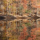 Autumn Tapestry by Deb Snelson