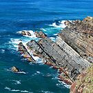 Forster's Rugged Coastline - NSW Australia by Bev Woodman