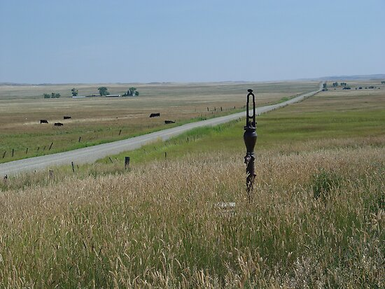 Little Pump on the Prairie by May Lattanzio